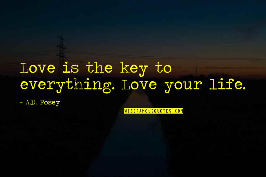 Contrite Quotes By A.D. Posey: Love is the key to everything. Love your