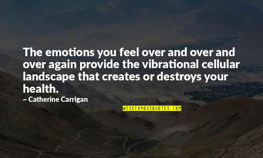 Control Your Emotions Quotes By Catherine Carrigan: The emotions you feel over and over and