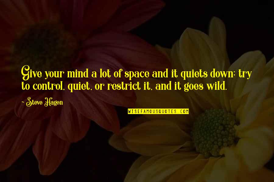 Control Your Own Mind Quotes By Steve Hagen: Give your mind a lot of space and