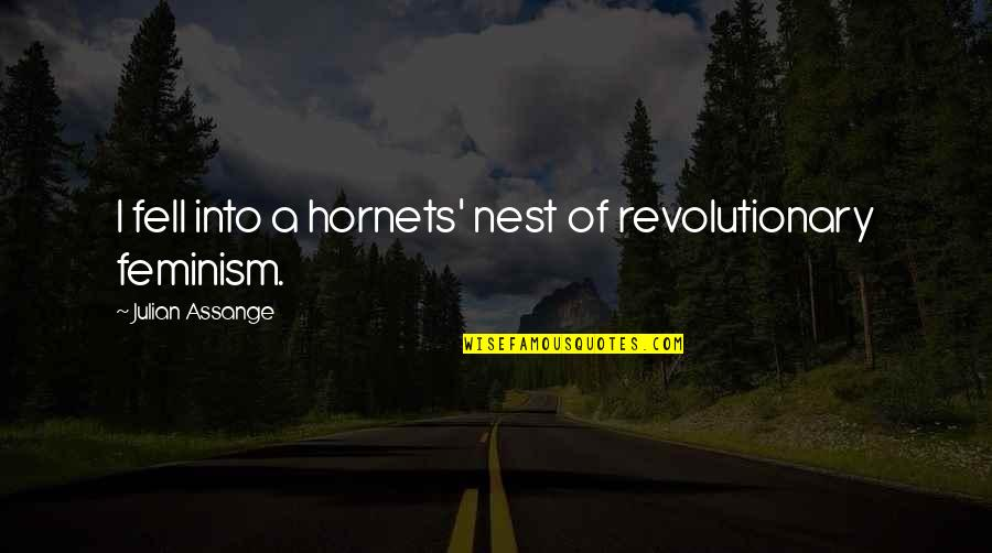 Coo Coo Nest Quotes By Julian Assange: I fell into a hornets' nest of revolutionary