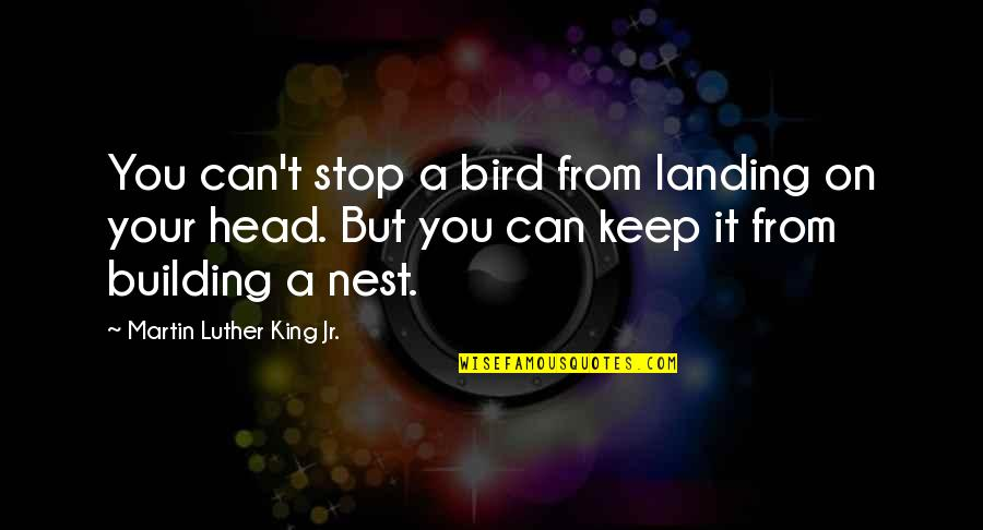 Coo Coo Nest Quotes By Martin Luther King Jr.: You can't stop a bird from landing on
