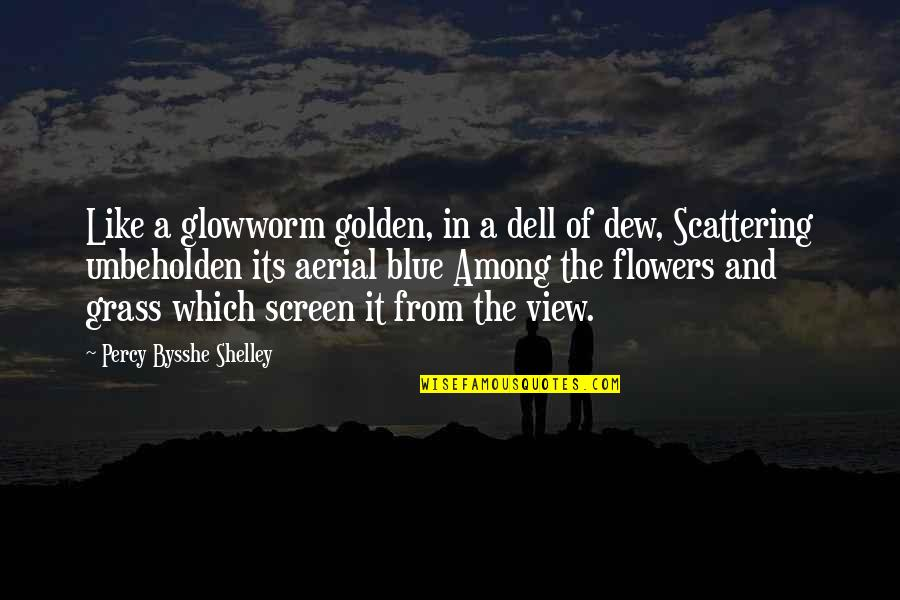Cool Hiking Quotes By Percy Bysshe Shelley: Like a glowworm golden, in a dell of