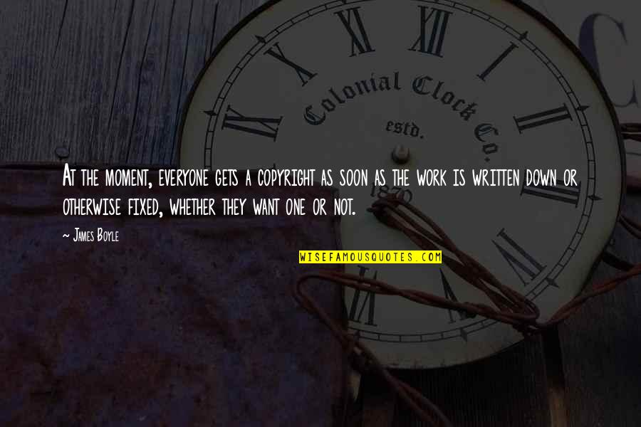 Copyright Quotes By James Boyle: At the moment, everyone gets a copyright as