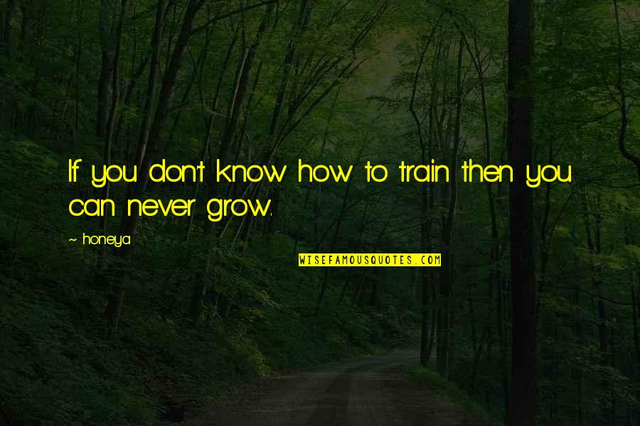 Corporate Training Quotes By Honeya: If you don't know how to train then