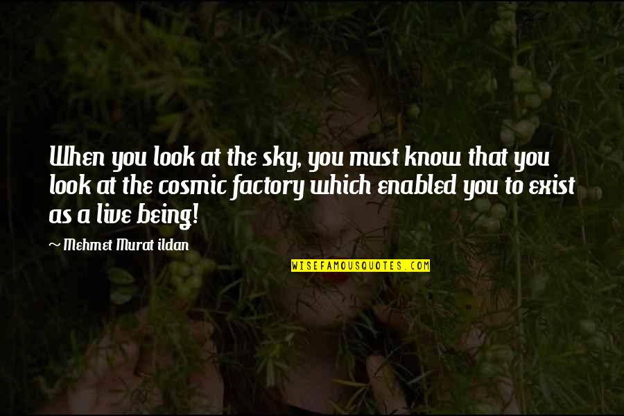 Cosmic Quotes By Mehmet Murat Ildan: When you look at the sky, you must