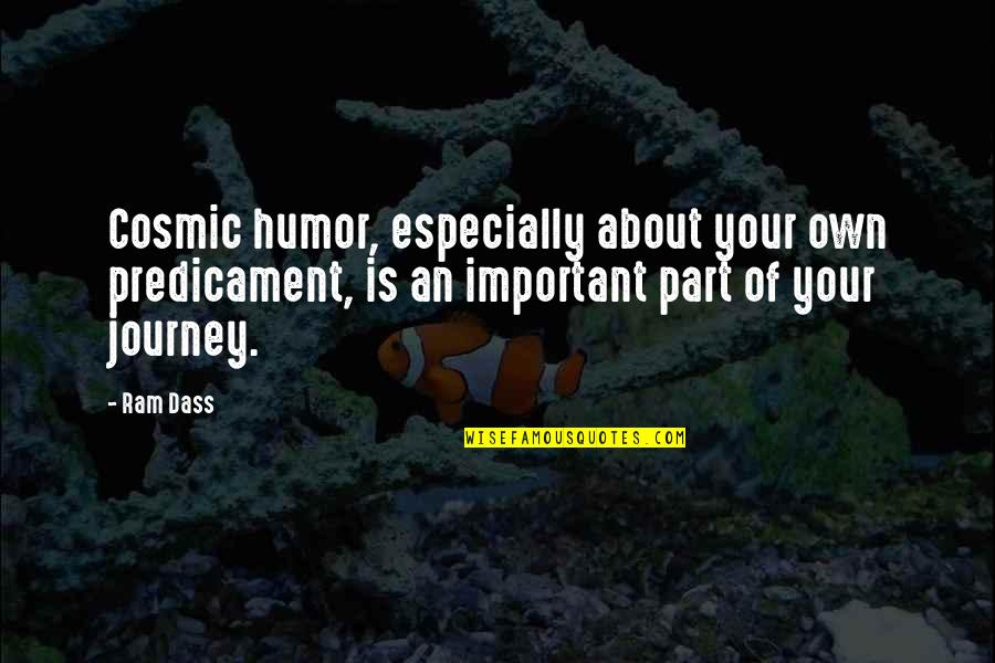 Cosmic Quotes By Ram Dass: Cosmic humor, especially about your own predicament, is