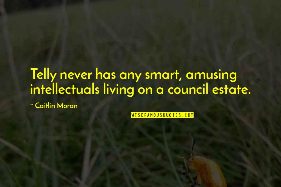 Council'll Quotes By Caitlin Moran: Telly never has any smart, amusing intellectuals living