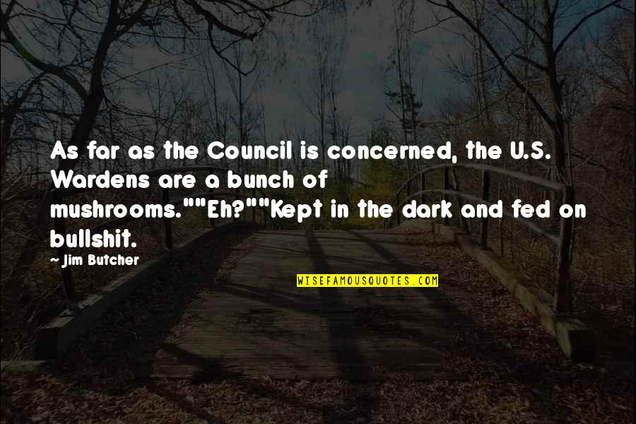 Council'll Quotes By Jim Butcher: As far as the Council is concerned, the