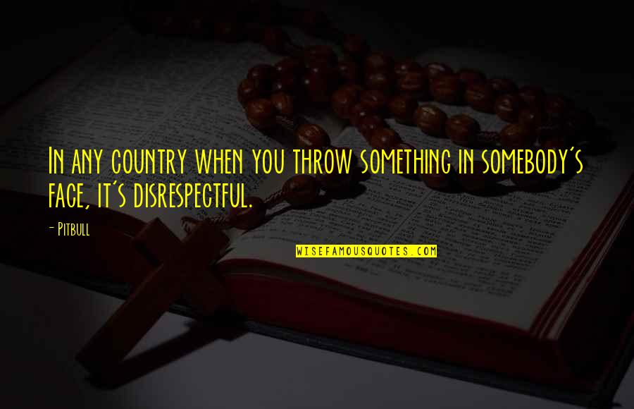 Country's Quotes By Pitbull: In any country when you throw something in