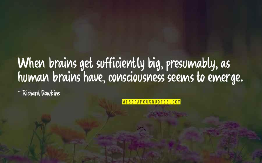 Couplove Quotes By Richard Dawkins: When brains get sufficiently big, presumably, as human