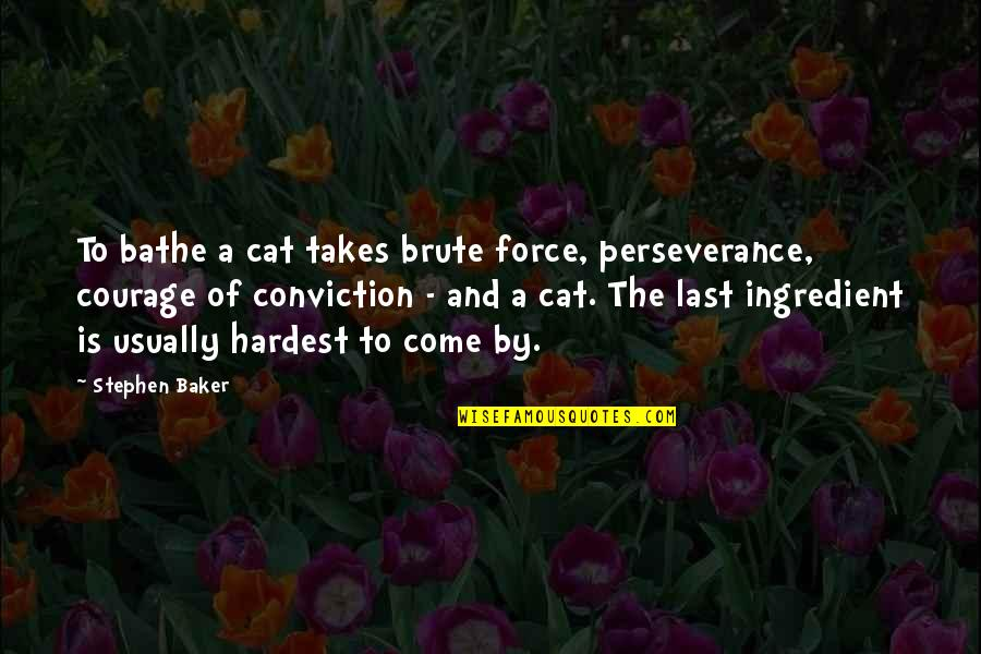 Courage And Conviction Quotes By Stephen Baker: To bathe a cat takes brute force, perseverance,