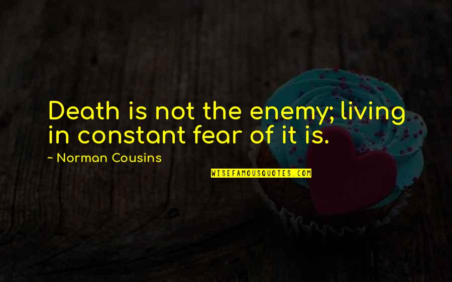 Cowabunga Dude Quotes By Norman Cousins: Death is not the enemy; living in constant
