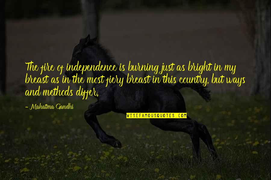 Cowman Quotes By Mahatma Gandhi: The fire of independence is burning just as