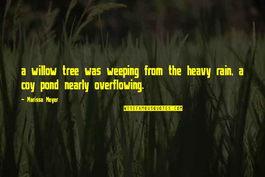 Coy Quotes By Marissa Meyer: a willow tree was weeping from the heavy