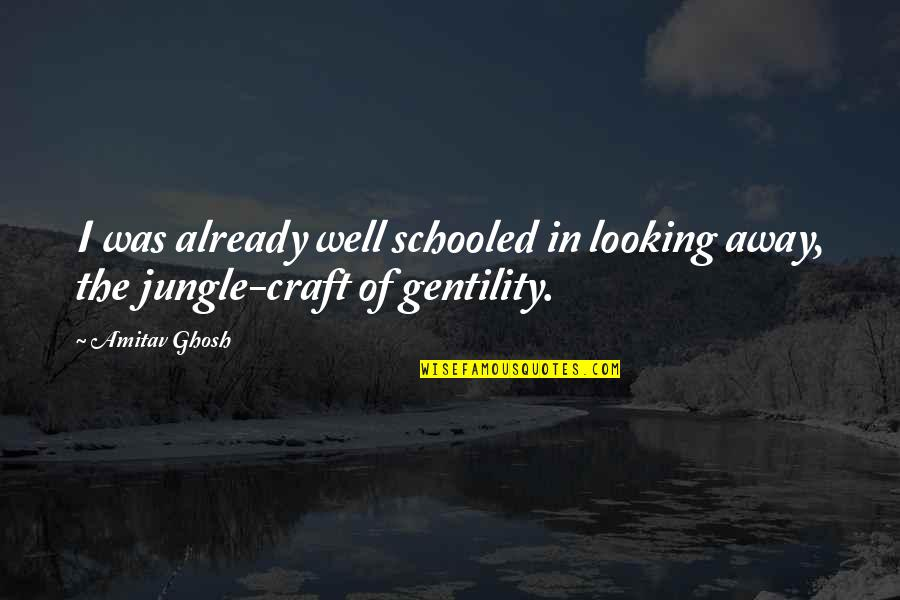 Craft'll Quotes By Amitav Ghosh: I was already well schooled in looking away,