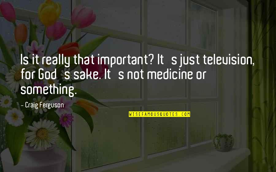 Craig Ferguson Quotes By Craig Ferguson: Is it really that important? It's just television,