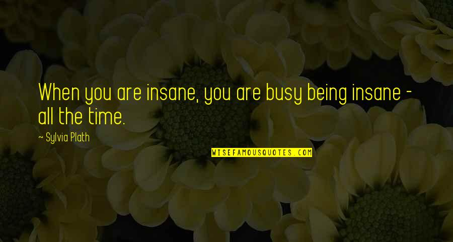 Craoibhin Quotes By Sylvia Plath: When you are insane, you are busy being