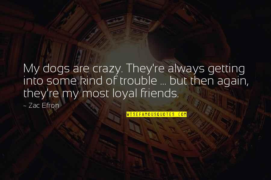 Crazy But Quotes By Zac Efron: My dogs are crazy. They're always getting into