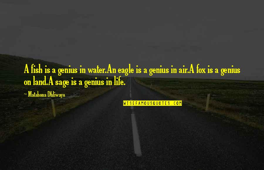 Creepier Quotes By Matshona Dhliwayo: A fish is a genius in water.An eagle
