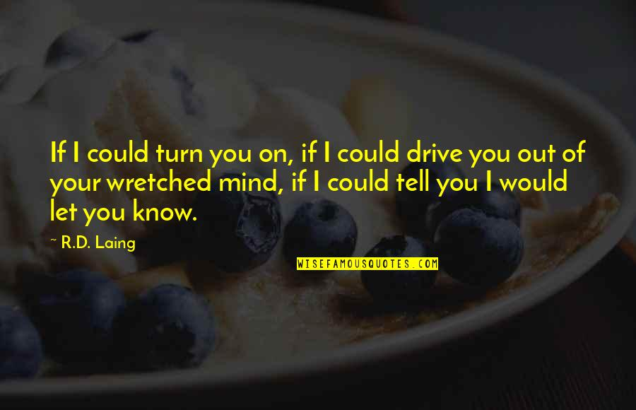 Cri Quotes By R.D. Laing: If I could turn you on, if I
