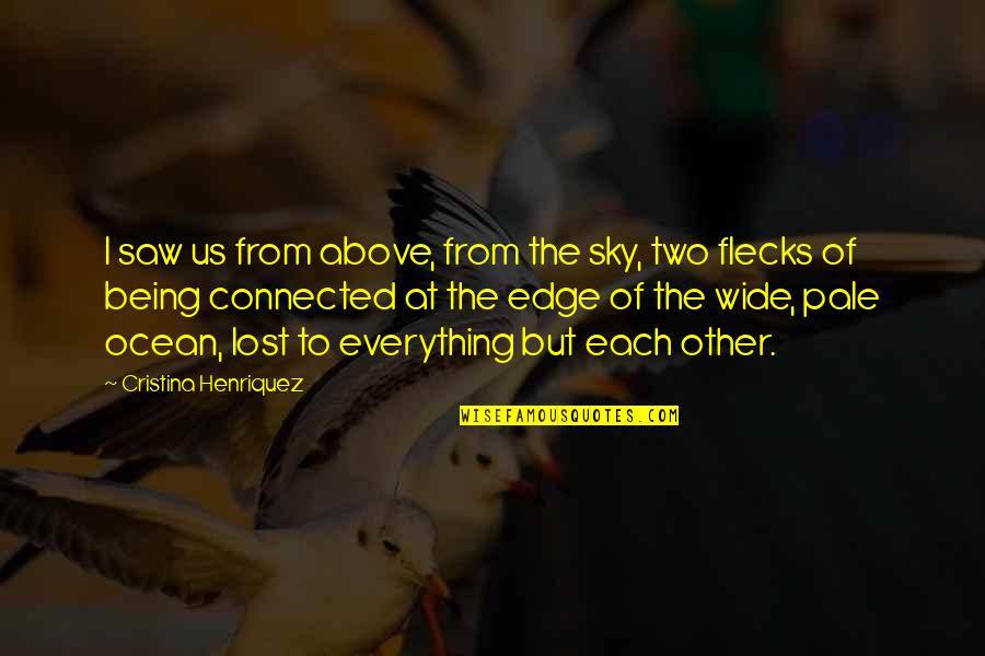 Cristina Quotes By Cristina Henriquez: I saw us from above, from the sky,