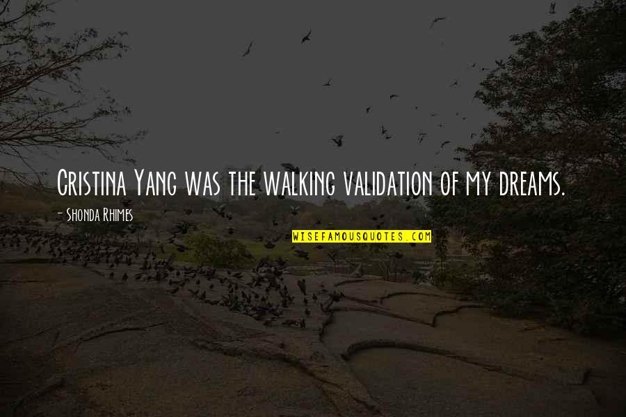 Cristina Quotes By Shonda Rhimes: Cristina Yang was the walking validation of my