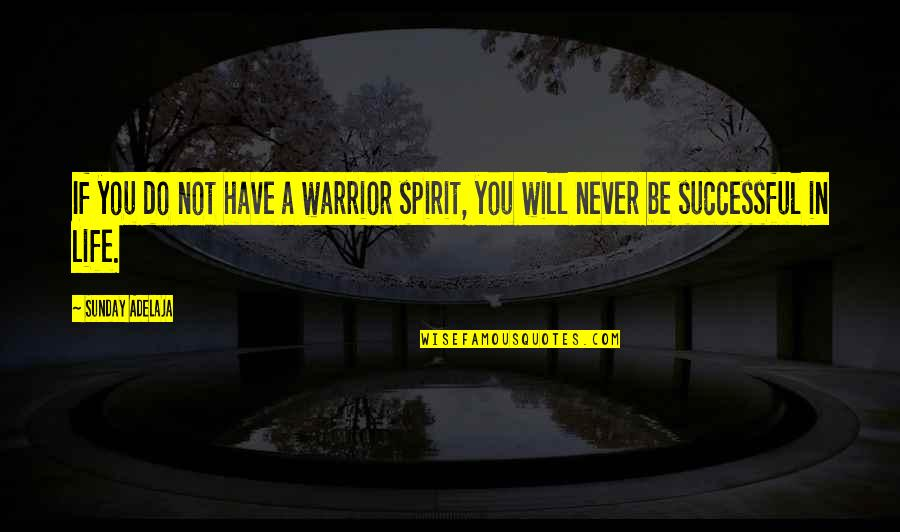 Crooked Cucumber Quotes By Sunday Adelaja: If you do not have a warrior spirit,