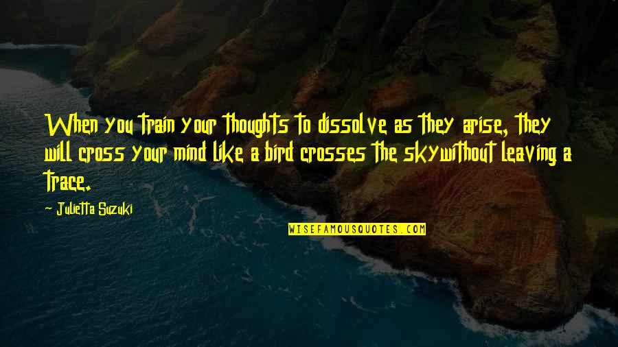 Cross My Mind Quotes By Julietta Suzuki: When you train your thoughts to dissolve as
