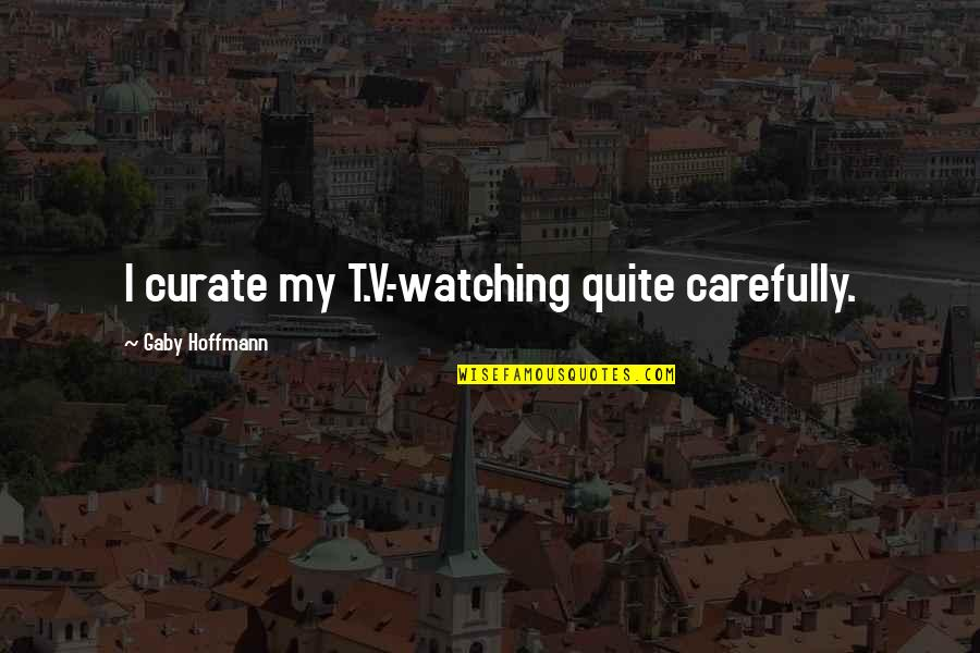 Crossfit Coach Glassman Quotes By Gaby Hoffmann: I curate my T.V.-watching quite carefully.