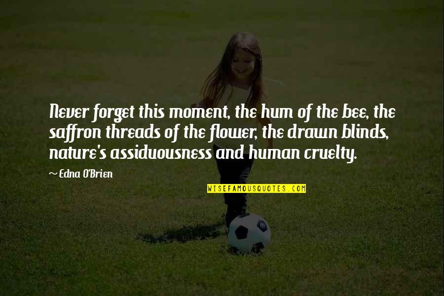 Cruelty Of Human Nature Quotes By Edna O'Brien: Never forget this moment, the hum of the