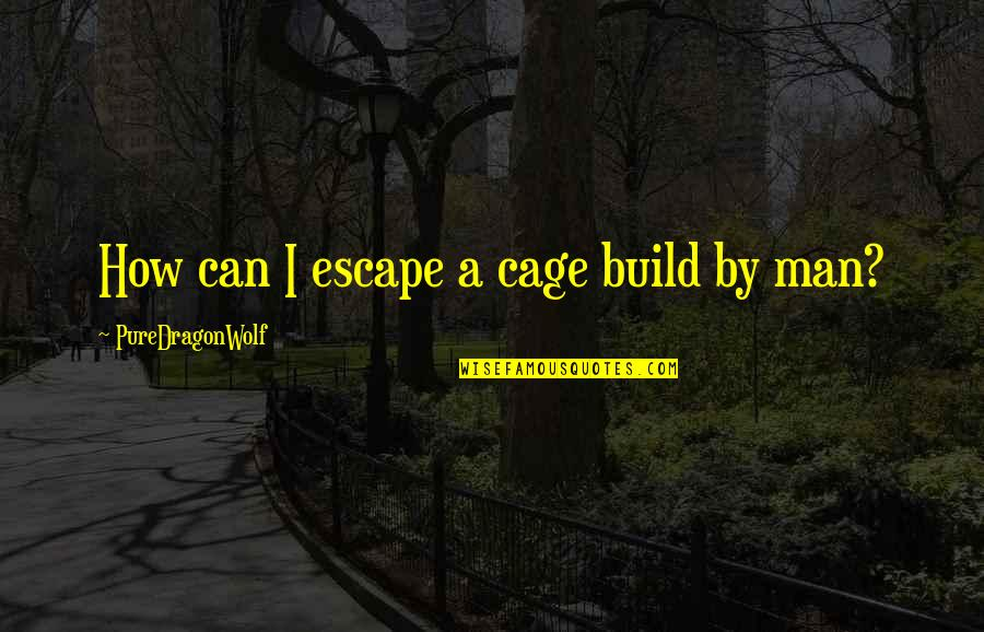 Cruelty Of Human Nature Quotes By PureDragonWolf: How can I escape a cage build by
