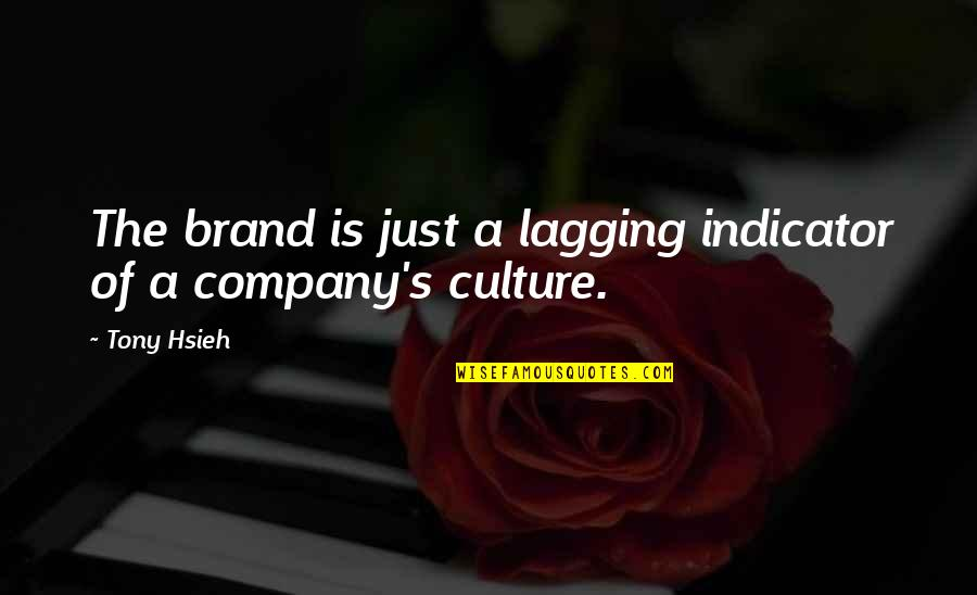 Culture Of A Company Quotes By Tony Hsieh: The brand is just a lagging indicator of