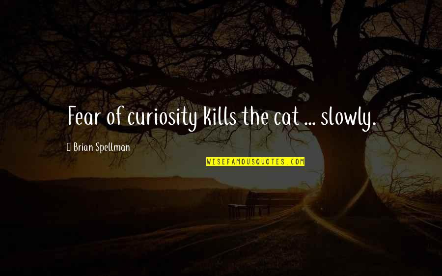 Curiosity And Cat Quotes By Brian Spellman: Fear of curiosity kills the cat ... slowly.