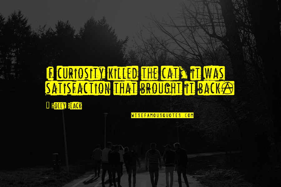 Curiosity And Cat Quotes By Holly Black: If curiosity killed the cat, it was satisfaction