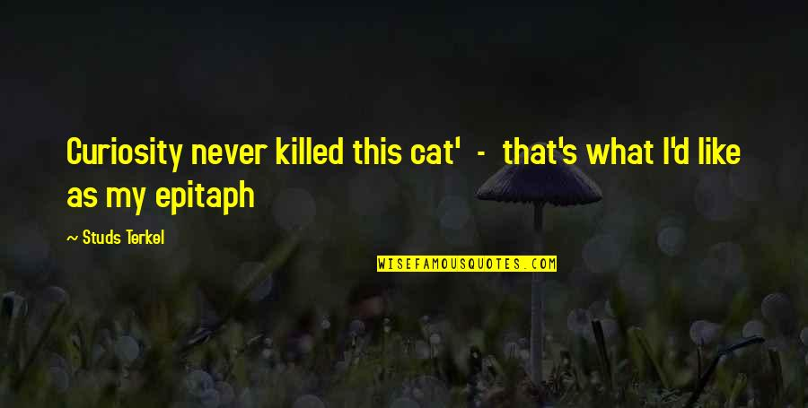 Curiosity And Cat Quotes By Studs Terkel: Curiosity never killed this cat' - that's what