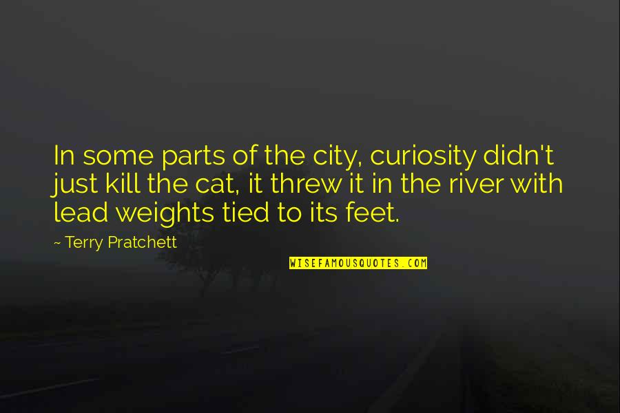Curiosity And Cat Quotes By Terry Pratchett: In some parts of the city, curiosity didn't