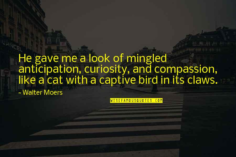 Curiosity And Cat Quotes By Walter Moers: He gave me a look of mingled anticipation,