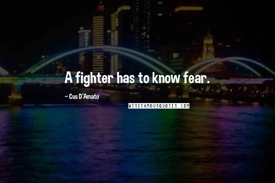 Cus D'Amato quotes: A fighter has to know fear.