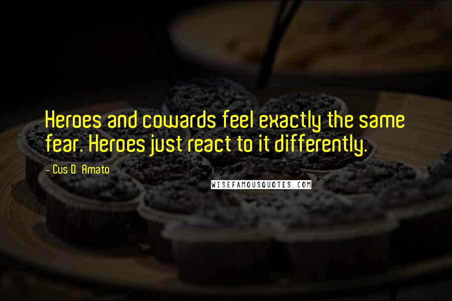 Cus D'Amato quotes: Heroes and cowards feel exactly the same fear. Heroes just react to it differently.