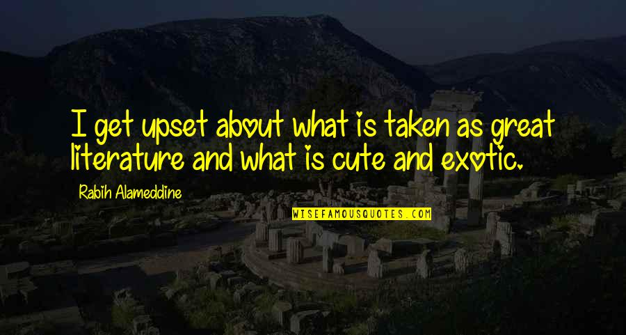 Cute And Quotes By Rabih Alameddine: I get upset about what is taken as