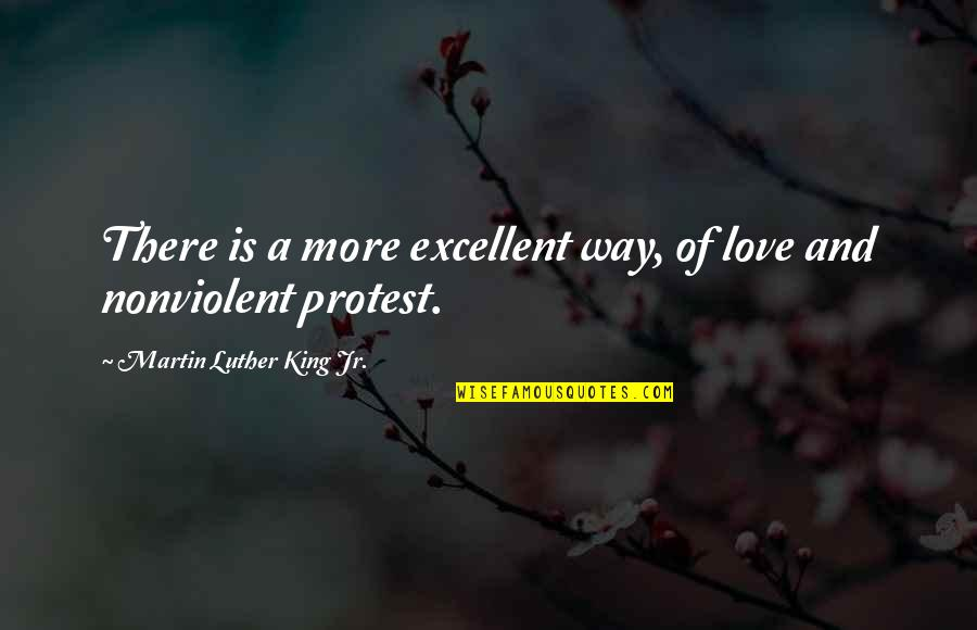 Cute Baby Pics With Quotes By Martin Luther King Jr.: There is a more excellent way, of love