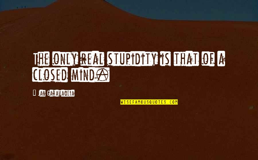 Cute Crocodile Quotes By Jan Garavaglia: The only real stupidity is that of a