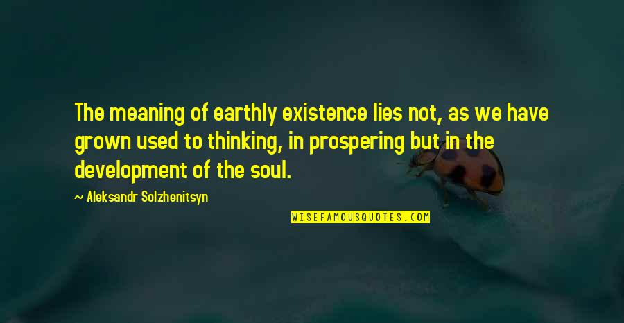 Cute Ffa Quotes By Aleksandr Solzhenitsyn: The meaning of earthly existence lies not, as