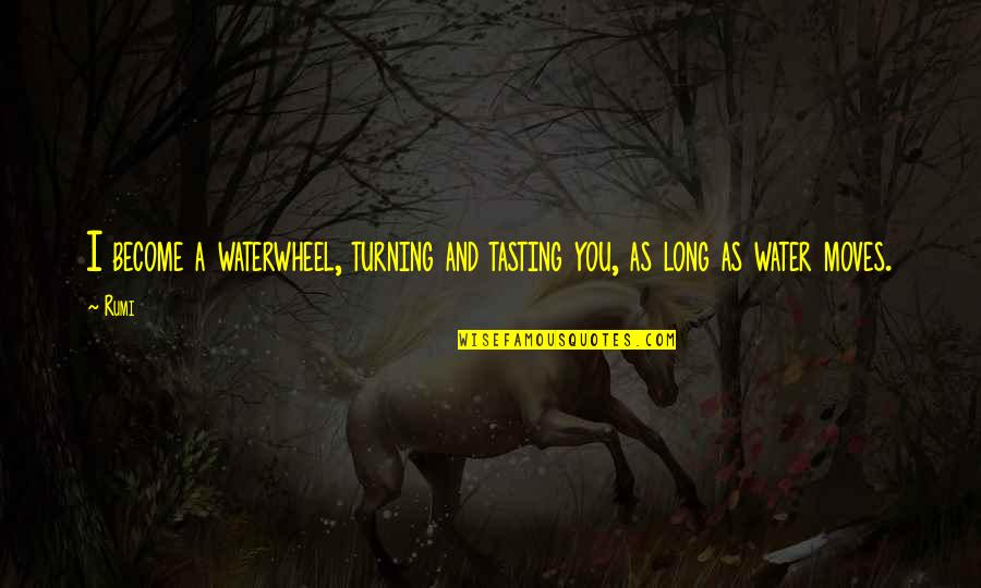 Cute I Love You Quotes By Rumi: I become a waterwheel, turning and tasting you,