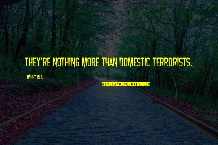 Cute Seersucker Quotes By Harry Reid: They're nothing more than domestic terrorists.