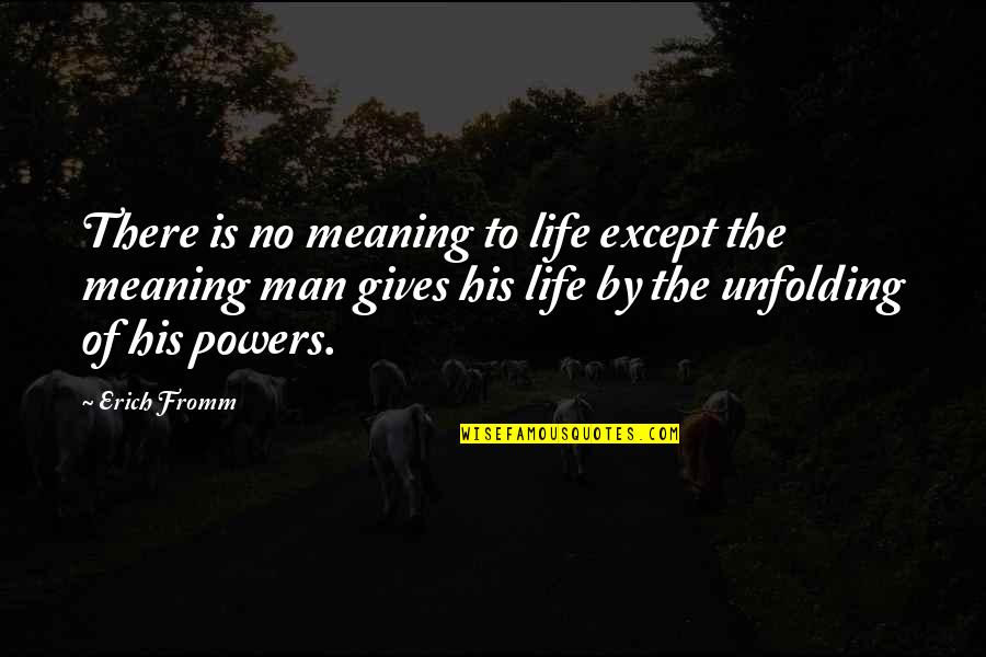 Cute Snowflakes Quotes By Erich Fromm: There is no meaning to life except the