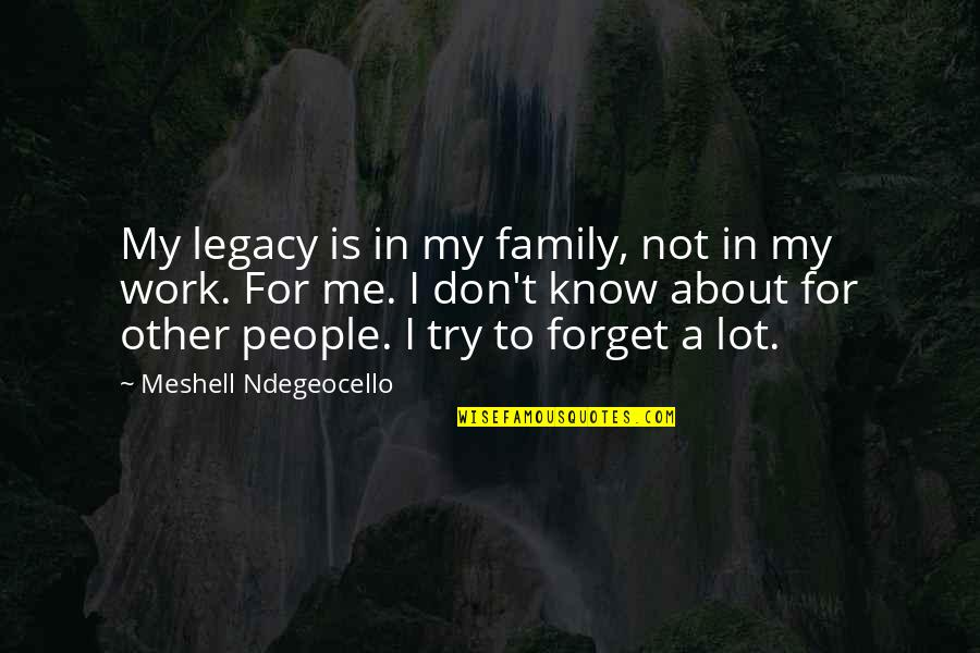 Cute Stoner Quotes By Meshell Ndegeocello: My legacy is in my family, not in