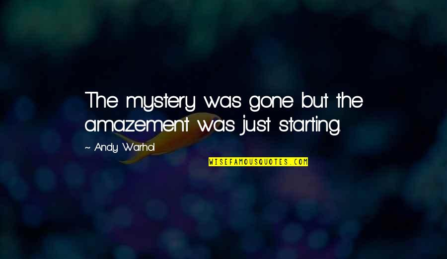Cute Tubing Quotes By Andy Warhol: The mystery was gone but the amazement was