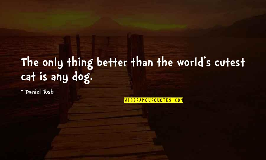 Cutest Dog Quotes By Daniel Tosh: The only thing better than the world's cutest