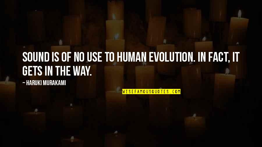 Cyber Bullying Brainy Quotes By Haruki Murakami: Sound is of no use to human evolution.